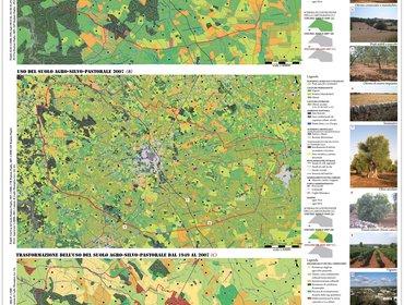Tavola 04 analisi uso del suolo