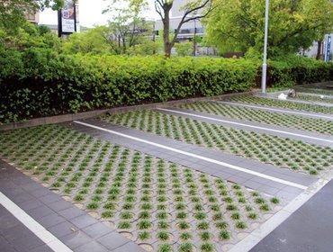 Green parking lots_33