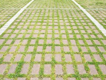 Green parking lots_35