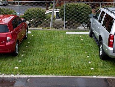 Green parking lots_39