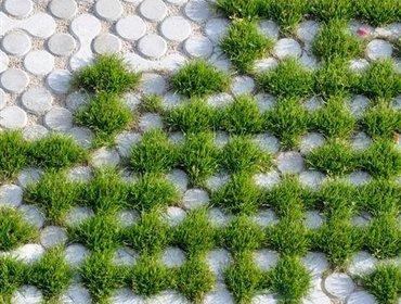 Green parking lots_57