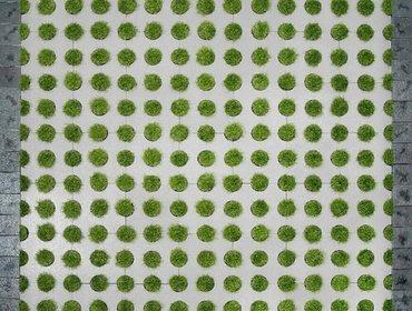 Green parking lots_63
