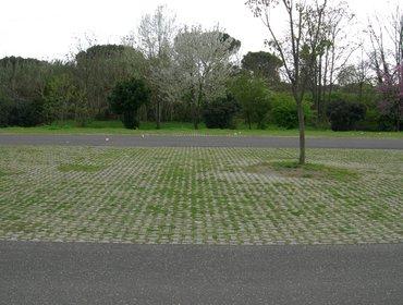 Green parking lots_69