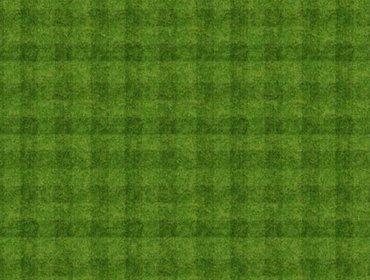 Grass sports field 02