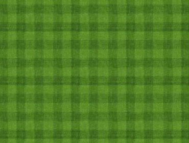 Grass sports field 03