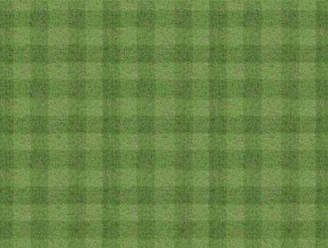 Grass sports field 04