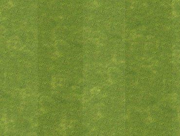 Grass sports field 05