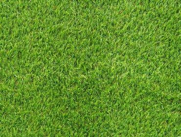 Erba prato grass lawn 06