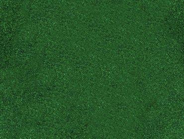 Erba prato grass lawn 08