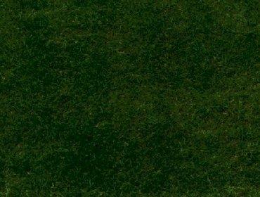Erba prato grass lawn 103