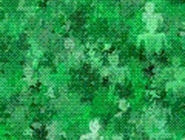 Erba prato grass lawn 109