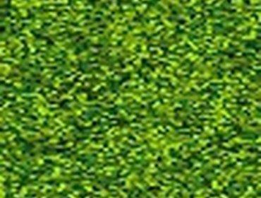 Erba prato grass lawn 110