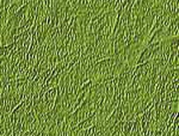 Erba prato grass lawn 112