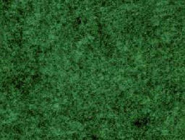 Erba prato grass lawn 115