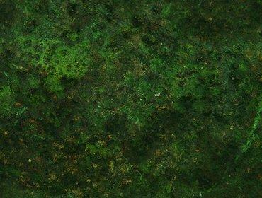 Erba prato grass lawn 116