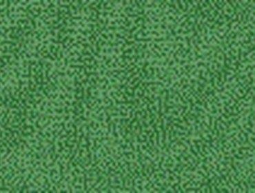 Erba prato grass lawn 117