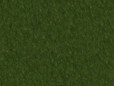 Erba prato grass lawn 118