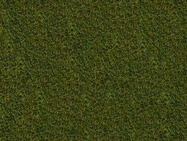 Erba prato grass lawn 125