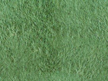 Erba prato grass lawn 126
