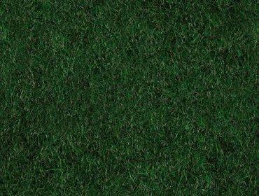 Erba prato grass lawn 132