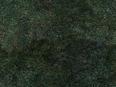 Erba prato grass lawn 136