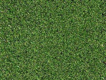 Erba prato grass lawn 143