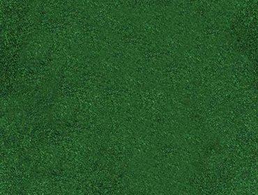Erba prato grass lawn 148