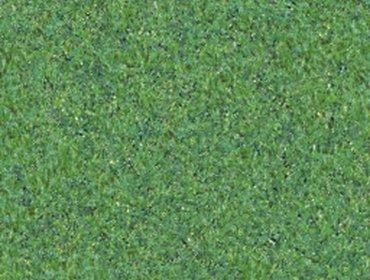 Erba prato grass lawn 150