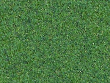 Erba prato grass lawn 151