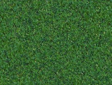 Erba prato grass lawn 160