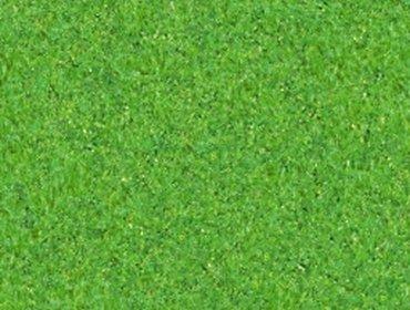 Erba prato grass lawn 162