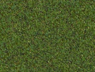 Erba prato grass lawn 164