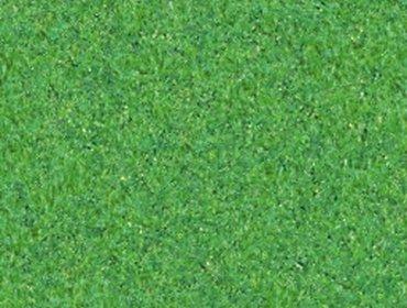 Erba prato grass lawn 166