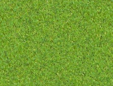 Erba prato grass lawn 167