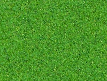 Erba prato grass lawn 171