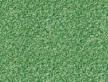 Erba prato grass lawn 173