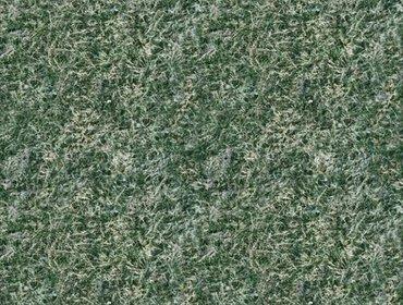 Erba prato grass lawn 180