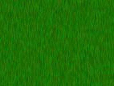 Erba prato grass lawn 183