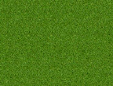 Erba prato grass lawn 199