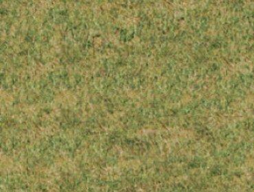 Erba prato grass lawn 20