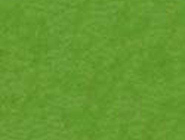 Erba prato grass lawn 205