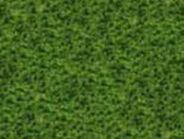 Erba prato grass lawn 206