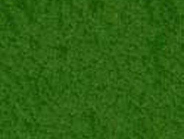 Erba prato grass lawn 207