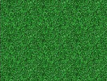 Erba prato grass lawn 211