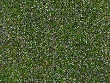 Erba prato grass lawn 221