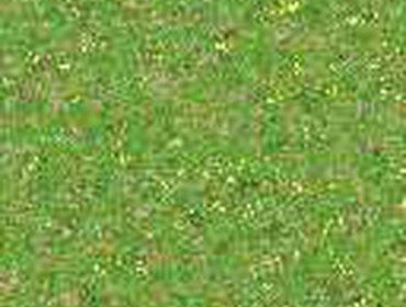 Erba prato grass lawn 228