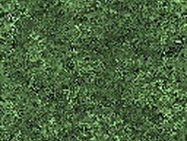Erba prato grass lawn 230