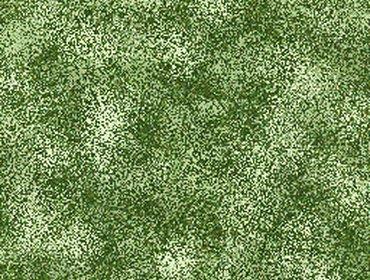 Erba prato grass lawn 234