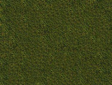 Erba prato grass lawn 240