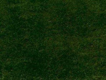 Erba prato grass lawn 242